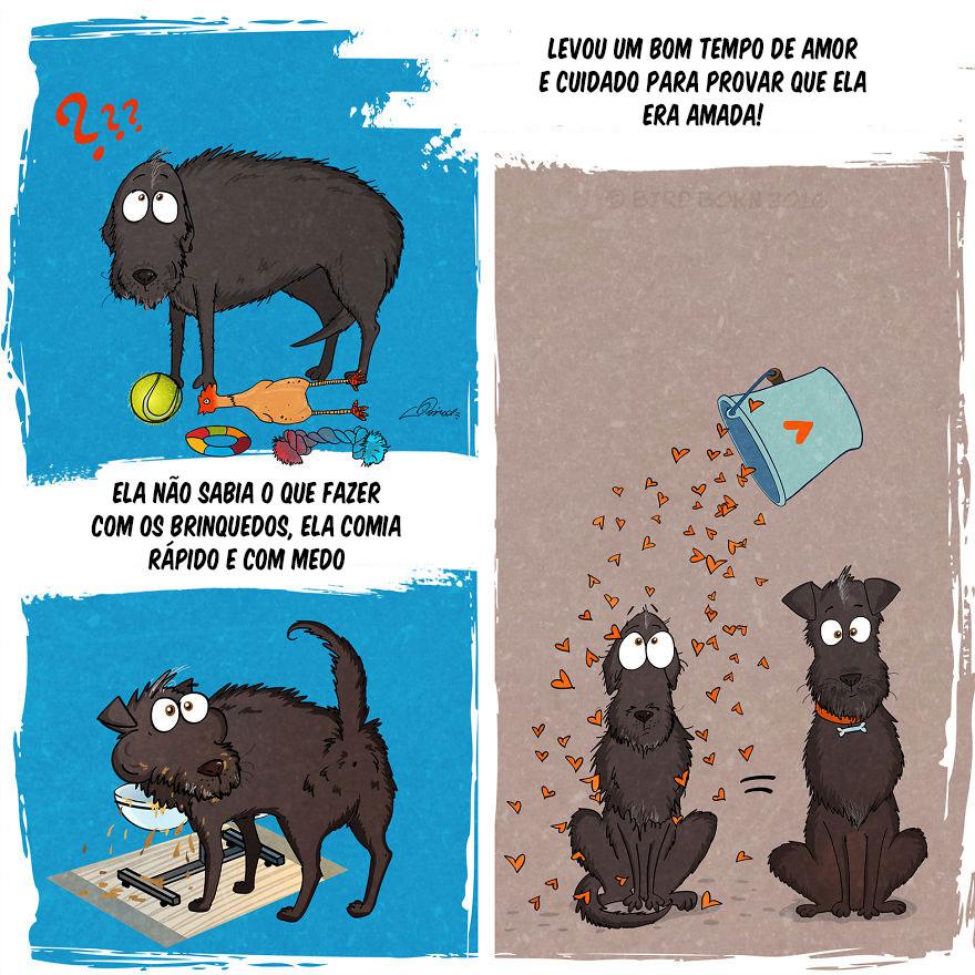 Adotar um animal de estimação 4