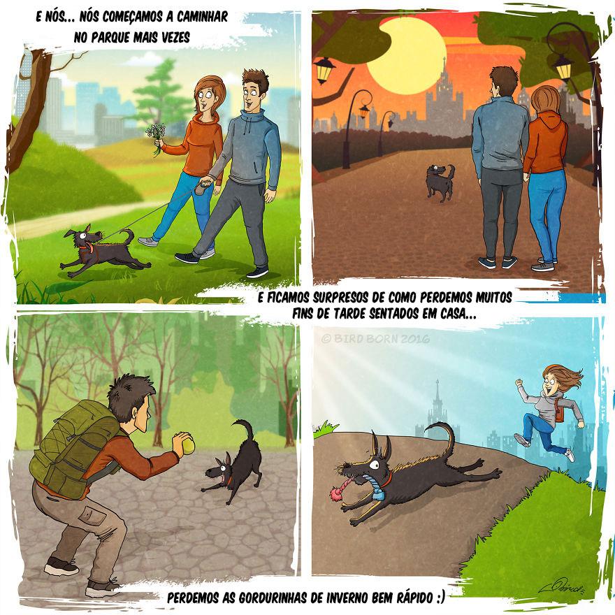 Adotar um animal de estimação 6