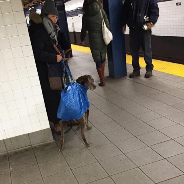 Pessoas no metrô 10